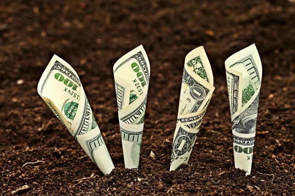 Tarım Yaparak Para Kazandıracak Muazzam İş Fikirleri 2017