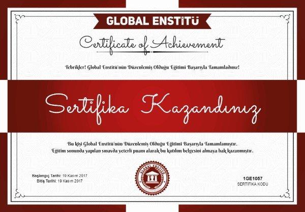 ücretsiz sertifika veren kurslar